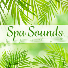 Spa sounds concept. Palm leaves background