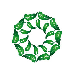 Wreath of green leaves 1.