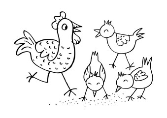 Chicken family Funny cartoon