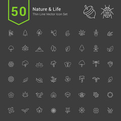 Nature and Life Icon Sets. 50 Thin Line Vector Icons.