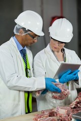 Technician using digital tablet while examining meat