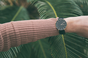 ideal fall outfit accessories. trendy fashion blogger wearing an elegant black and golden watch. close up fashion details. palm leaf in the background.