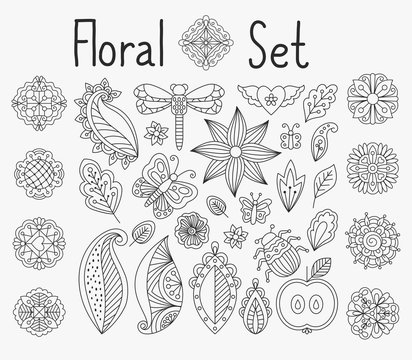 Vector floral set with leaves and herbs, bugs and butterflies hand drawn mandala elements