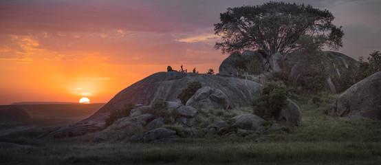 Obraz Kopje Lion Sunset - fototapety do salonu