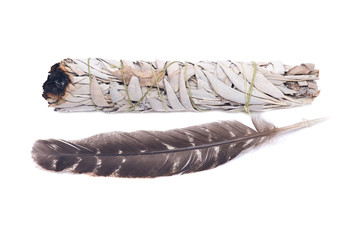 Sage smudge stick with grade A barred turkey smudging feather isolated on white background