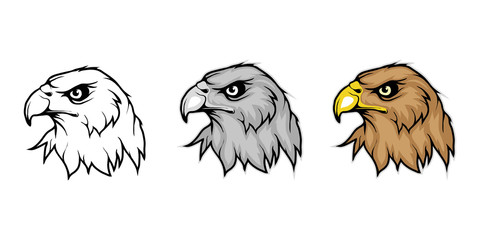 Eagle, isolated on white background, colour and black white illustration, suitable as logo or team mascot