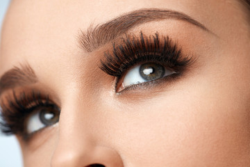 Long Black Eyelashes. Closeup Beautiful Female Eyes With Makeup