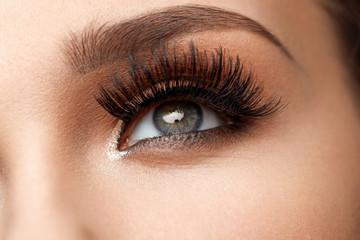 Long Black Eyelashes. Closeup Beautiful Female Eye With Makeup