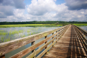 Huntington Beach State Park, South Carolina, USA. View from the wooden boardwalk on the expansive salt marsh. Landscape with cloudy blue sky reflected in the water.