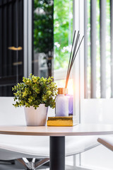 Modern workplace with tree pot and reed freshener on wooden tabl