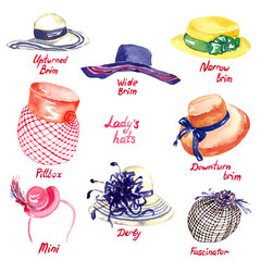 Lady's hats types: Upturned Brim, Wide Brim, Narrow Brim, Downturn Brim, Pillbox, Mini, Derby, Fascinator, hand painted watercolor illustration