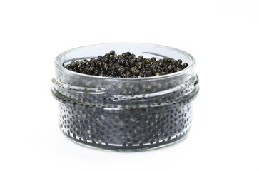 Black caviar in a glass jar closeup isolated on white background