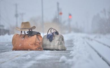 雪国の旅・ステーション
