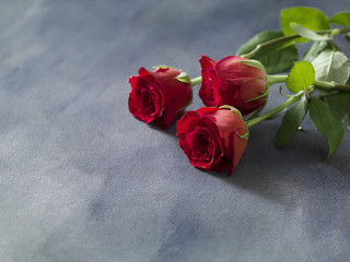 Celebration or wedding bouquet of red roses