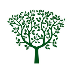 Green Tree with Leafs. Vector Illustration.