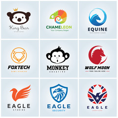 Animal logo collection,  Animal head symbol. Eagle logo, Bear logo, Chameleon, Equine logo, monkey logo, Wolf logo, Wing Logo, Vector logo template.