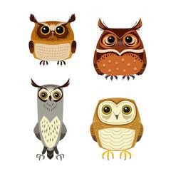 Owl cartoon character set