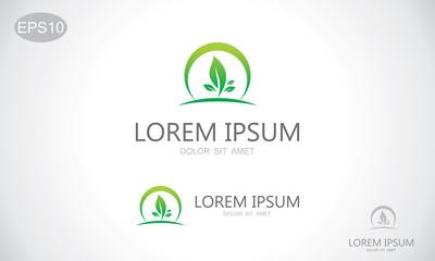 green leaf organic vector logo