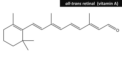 Molecular structure of retinal (vitamin A)