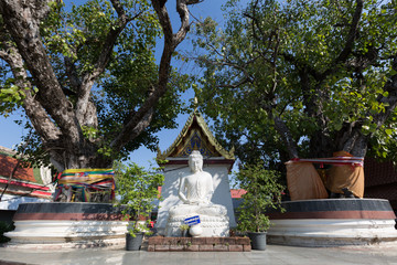 white buddha at Phitsanulok Province, Thailand.