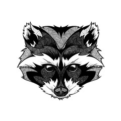 Raccoon head, illustration, black and white