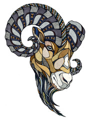 Ram head, illustration