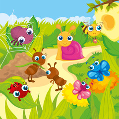 Cute Small Animals Meadows