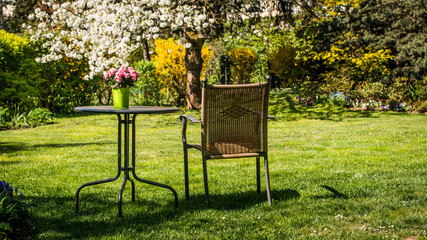 Relaxing place- table and  chair in flowering spring  garden.