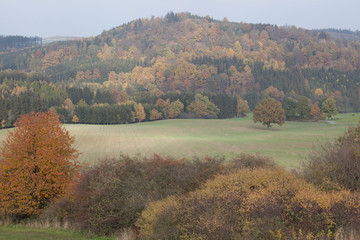 Autumn in german Mountains and Forests - Ore Mountains / Saxony and Bohemia
