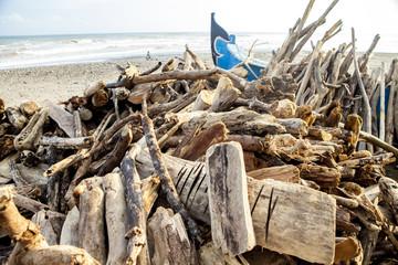 pile of driftwood bali