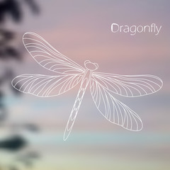 Linear dragonfly on blurred natural background. Vector illustration.
