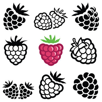 Raspberry icon collection - vector illustration