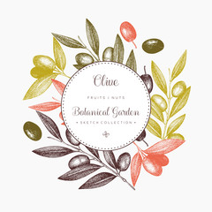 Olive branch wreath. Vintage card design with hand drawn olive tree sketch. Vector template. Botanical illustration.