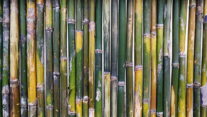 rough fence bamboo pattern background