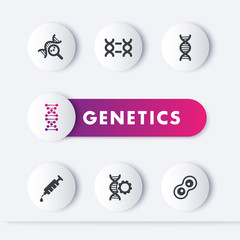 genetics icons set, genetic modification, dna replication, research, vector illustration