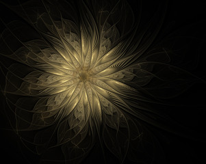 Abstract golden flower on a black background