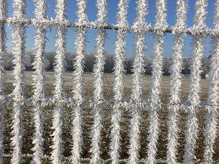 frozen metal bars of a gate