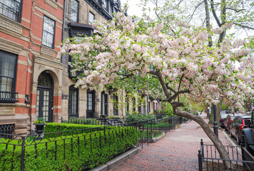 Boston in early spring, Massachusetts, USA