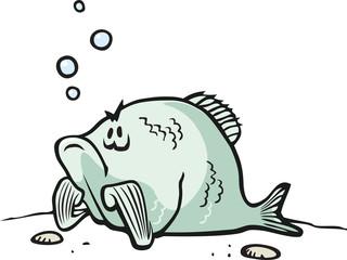 Feeling Crappie A cartoon Fish feeling bad.