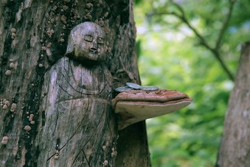 Japanese wood carving of a Buddha in a Tokyo forest with a mushroom and coins.