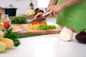 Close up of  woman's hands cooking in the kitchen. Housewife slicing ​​fresh salad. Vegetarian and healthily cooking concept