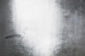 Artistic monochromatic seagull