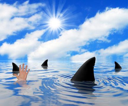 Sharks circling drowning man