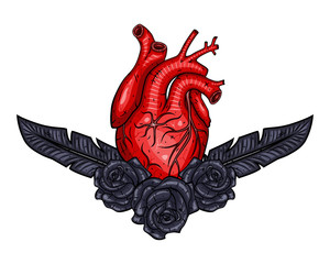 Red Valentines heart with plume and rose. Vector illustration.