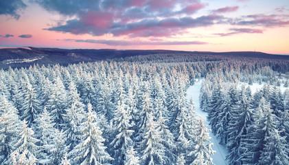 Rennsteig im Winter - Thüringer Wald