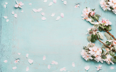 Springtime background with beautiful spring blossom in pastel color, top view, frame Fototapete