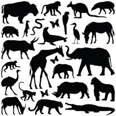 Zoo animals collection - vector silhouette