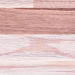 oak wood – nature background