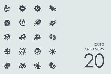 Set of organisms icons
