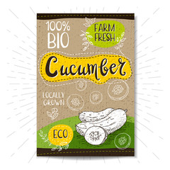 Colorful label in sketch style, food, spices, cardboard texture background. Cucumber Vegetables. Bio, eco, farm, fresh. locally grown. Hand drawn vector illustration